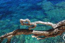 Ibiza- Landschaft