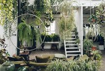 •garden