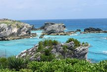 Bermuda / by Buzz Bishop
