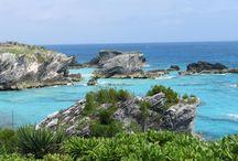 Bermuda / by Buzz Bishop