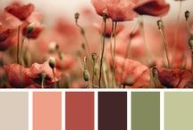 Colour pairings
