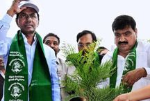 TS CM KCR:Bring Rains Backs And Send Monkeys Back To Forests