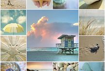Beach and coast
