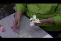 Цветы видео