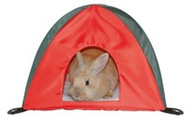Animals <3 Equipment for your lovely pet..