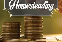 Business: ways to make money from home.