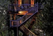Treehouse. / by Brynne Dyrhood