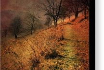 Autumn- landscapes, nature...