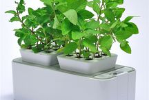 greenYou home gardening - as green as it gets! / greenYou makes it possible for everyone to be the own gardener!