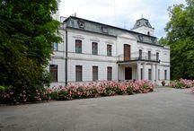 Dąbki - Pałac