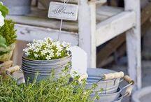 Garden - outdoor / Ideas...for outdoor