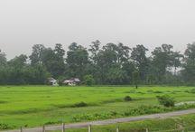Monpakhi Homestay / Tip, information and images of Monpakhi Homestay in Santiniketan.