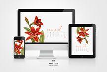 calendario 2016 - newlayer