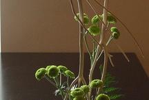 Flower Arrangementt