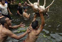 Killing animals its tradition