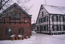Fleermann im Winter 2005