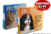 Discount Pet Meds / Vet Supplies / Buy Genuine Pet Meds @ Discount Prices! www.Pet-Rx-Meds.com / by Pet-i-Meds