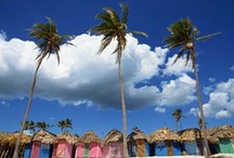 Caribbean / by Kate Sisk