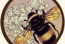 шмели,пчелы и др.насекомые