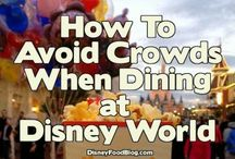 Disney - dining