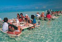 Dining experiences around the world