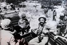 Kıbrıs Harekâtı