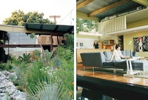 Homes and environments / by Megan Salole