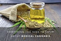 CBD Oil/Medical Marijuana / Medical Marijuana/Cannabis articles and info for chronic pain and chronic illness. It isn't about the high for me.