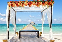 Wedding Dream Ideas