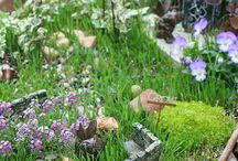 Fairy garden Harriet