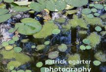 patrick egarter photography / photography