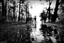 art - photo - rain