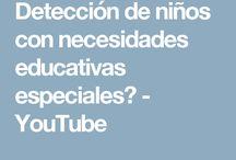 IDENTIFICACIÓN DE NECESIDADES EDUCATIVAS ESPECIALES / INFORMACIÓN Y/O INSTRUMENTOS QUE ME PERMITE IDENTIFICAR A UN ALUMNO CON N. E. E., CON O SIN DISCAPACIDAD Y, CON ELLO, LOGRAR DISEÑAR ADECUACIONES CURRICULARES DE ACUERDO A SUS NECESIDADES E INTERESES.