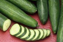 FOOD • Cucumber