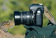Phabulous Photography