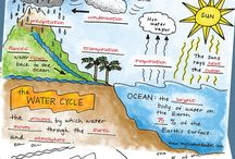 7월 water&water cycle