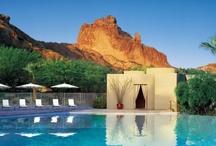 The Neighborhood / Arcadia, East Phoenix, Arizona / by Space Massage Studio