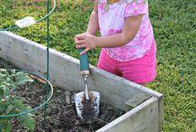 Organic Gardening / An ode to Organic Gardening and Organic Gardeners.