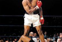 Muhammad  Ali / by Fadi Aboush