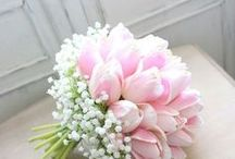 Tulipano bouquet