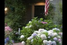 landscaping / by Lana Riggs Hill
