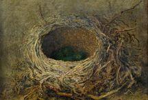 Nestjes/nests