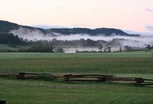 My Favorite Berry Meadow Farm / Berry Meadow Farm Alpacas, knit and crochet garments and patterns, alpacas, farm life in Vermont / by Janice Davey