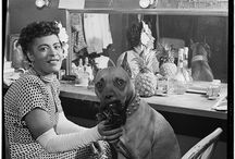 Famous people with dogs