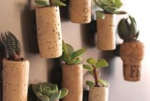 Quirky corks