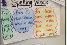 Differentiating Literacy