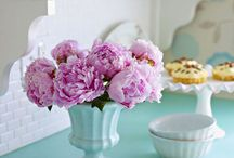 decorating and more / by Susan DePasquale