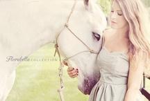 portréty s koňmi fotografie