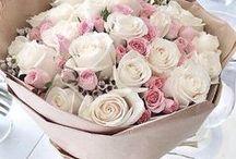pretty petal ♡