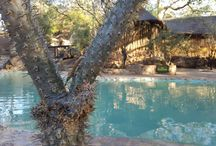 Mabula Game Reserve / Family friendly budget safari reserve around 2 hours North of Johannesburg.